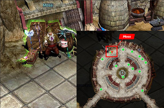 MU Online   Medieval Fantasy MMORPG